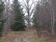 """I call this one """"The Throne""""; many deer have been harvested out of this stand. Year after year it has produced. This one is in my future plans to rebuild for comfort."""