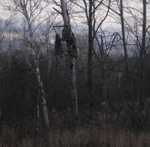 Note this single seat, 15 foot ladder stand, that has a split camouflage fabric wrap on the sides that I can close around it for more concealment. My son Leif harvested a nice 8-pointer from this stand in 2008.